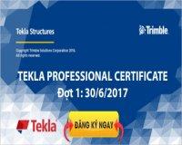 Tekla Professional Certificate 2017